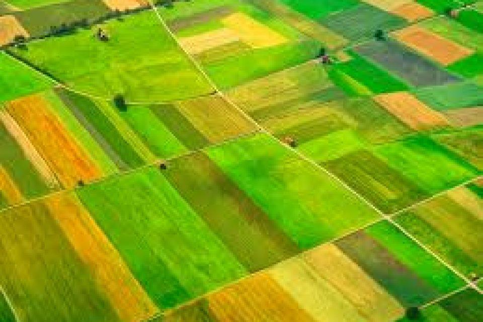 Земеделската земя поскъпна с 4 на сто през 2016 година