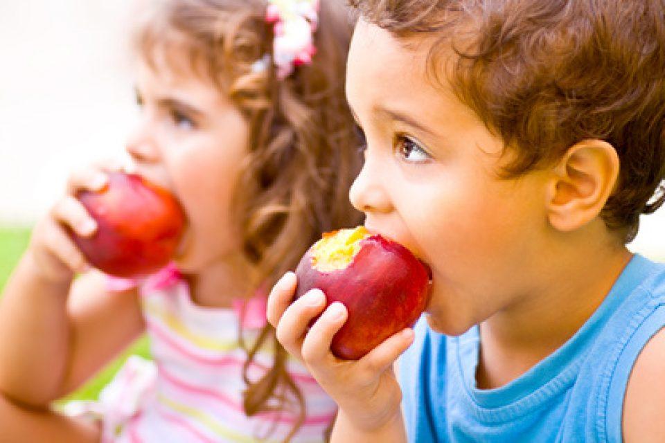 Започна прием по Училищните схеми за плодове, зеленчуци и мляко