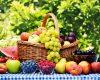 """Отпуснати са 100 000 лева за сертифициране на стопанствата в сектор """"Плодове и зеленчуци"""""""